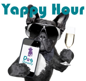 Yappy Hour_dog